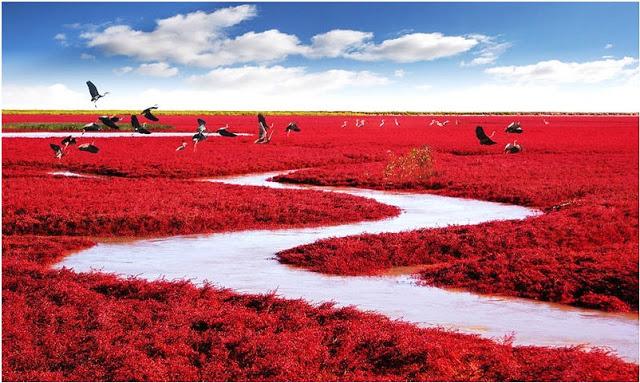 China Praia Vermelha