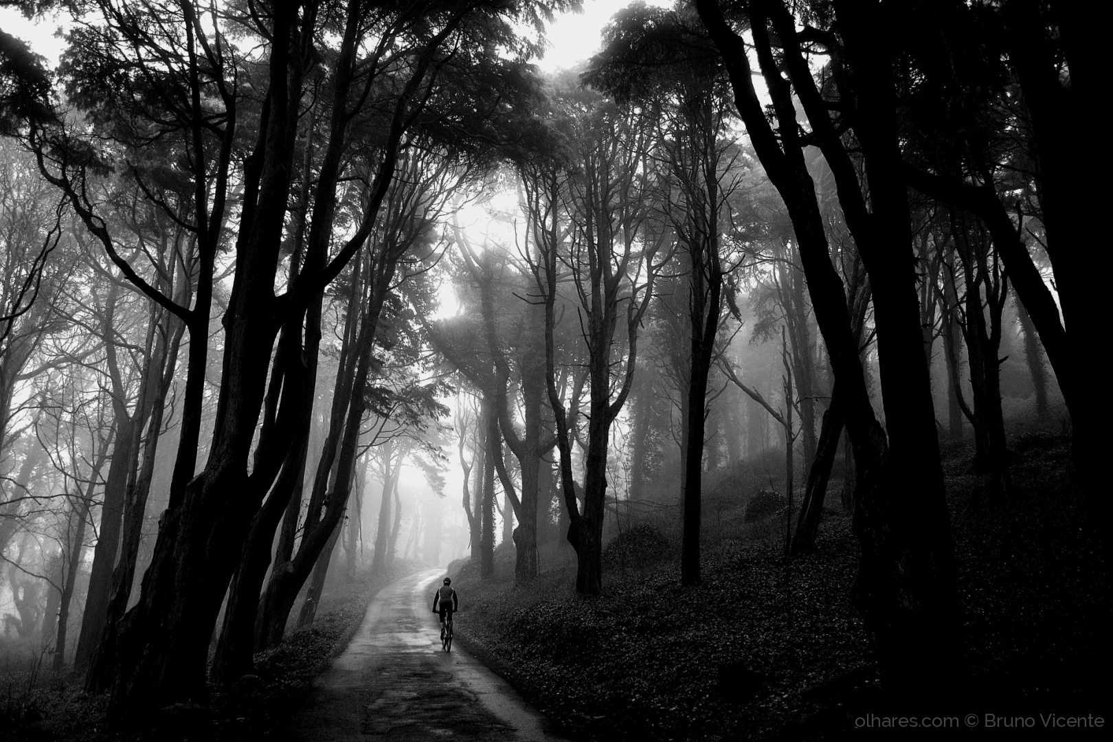 Cycling to the light © Bruno Vicente