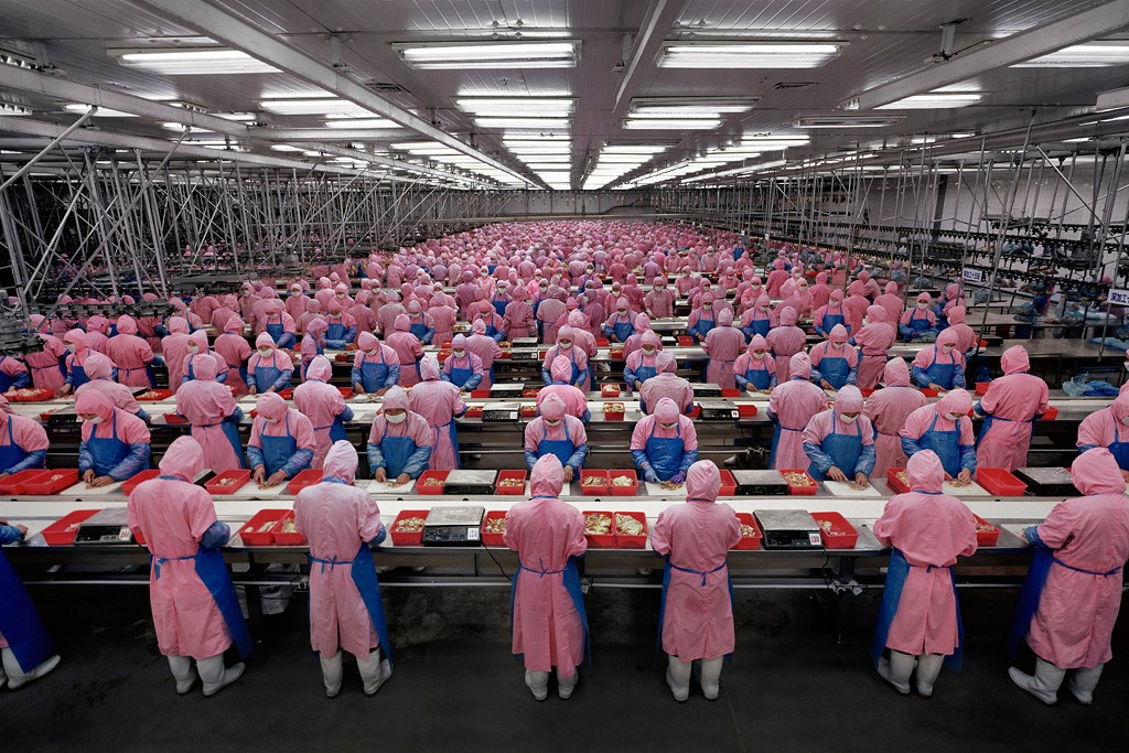 Andreas Gursky - Chicken processing Plant 2005