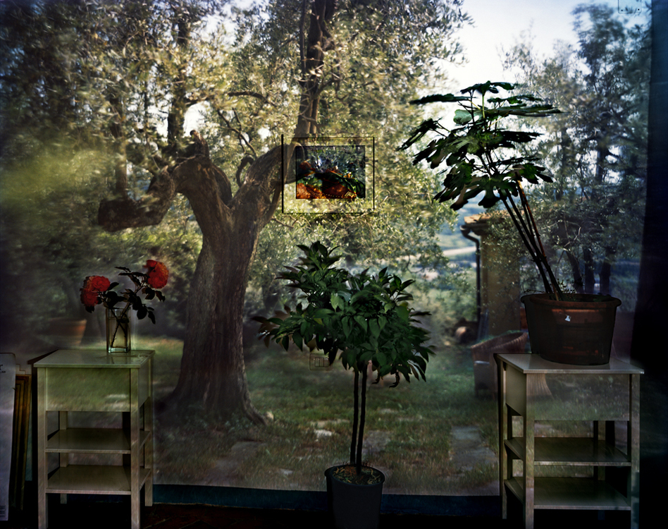 CO-Garden-with-Olive-Tree_09_slide