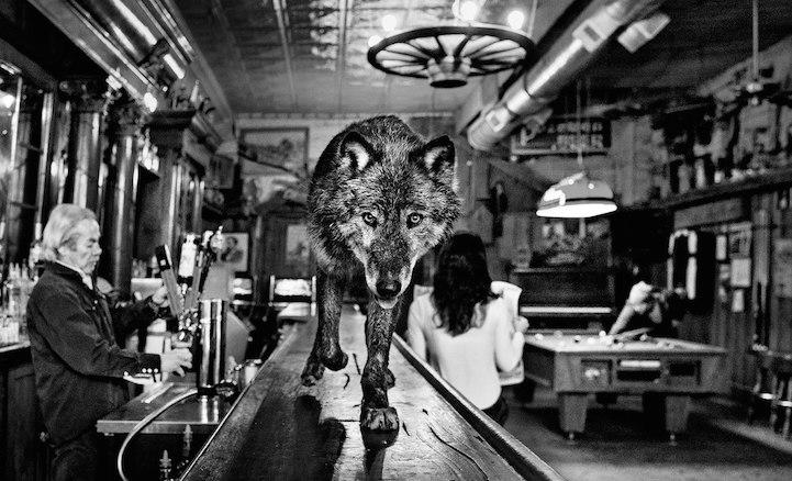 © David Yarrow