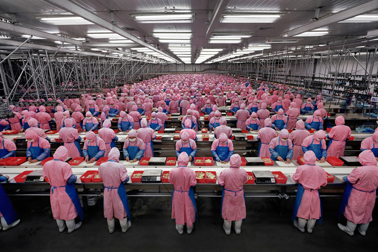 Manufacturing #17 - Deda Chicken Processing Plant, Dehui City, Jilin Province, China, 2005
