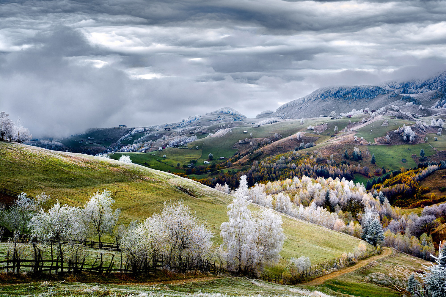 10. Floresta em Pestera, Roménia. © Eduard Gutescu / National Geographic Traveler Photo Contest