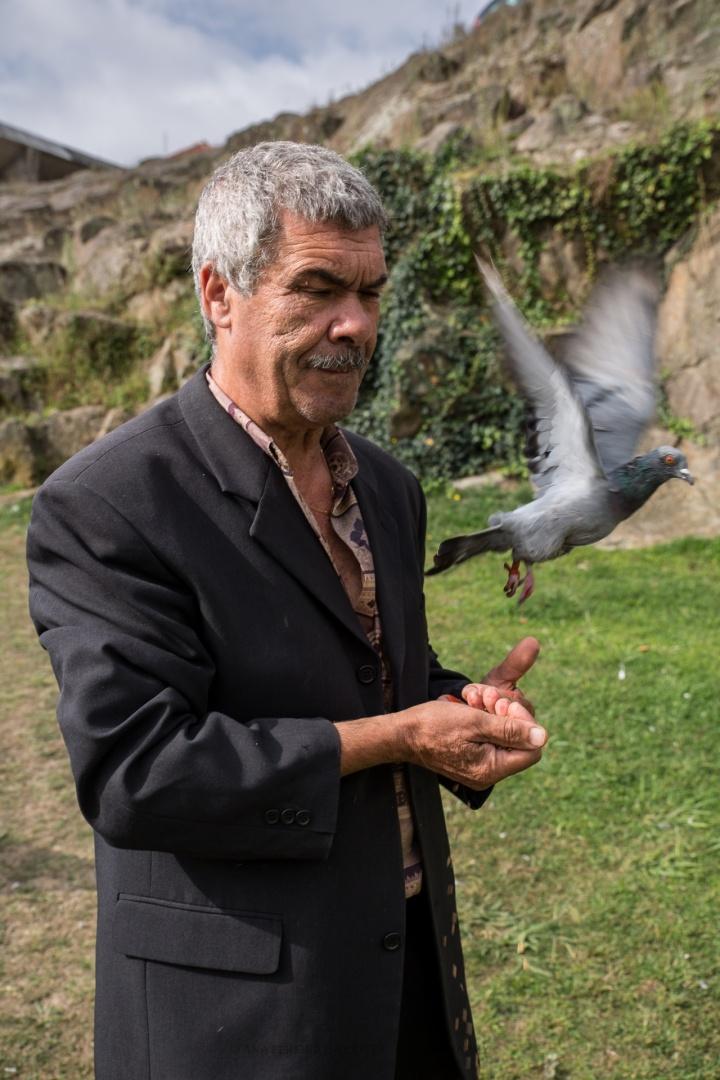 © Ana Costa - O curador de aves.