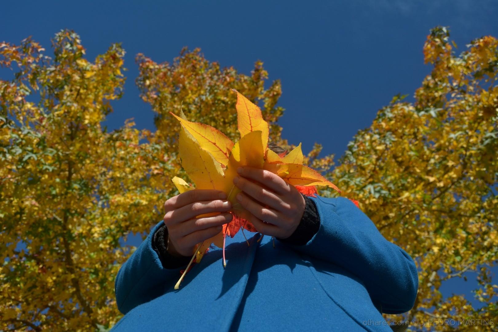 © J. PEDRO MARTINS - O Outono nas tuas mãos...