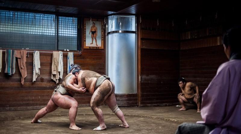 """""""Sumo"""". Um treino de Sumo, no Japão, ganhou a categoria das """"08h00"""""""