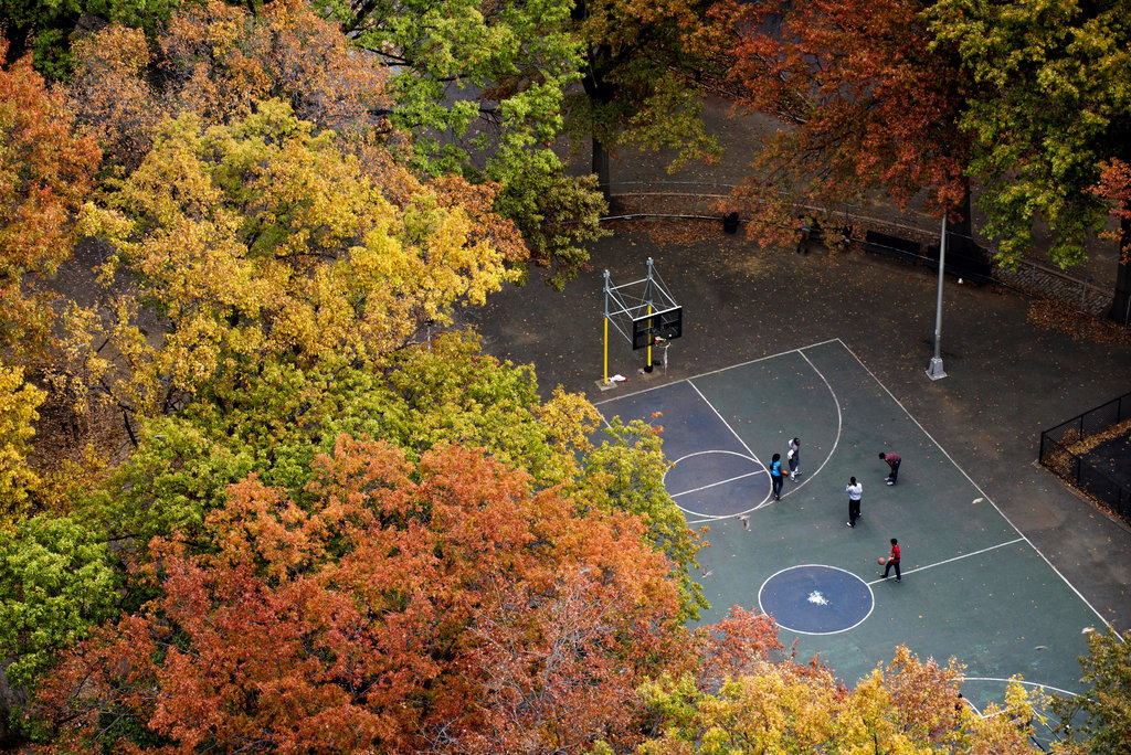 MANHATTAN 11/1/2015 Basketball players were enveloped by fall foliage in Marcus Garvey Park in Harlem. Karsten Moran for The New York Times Share Tweet