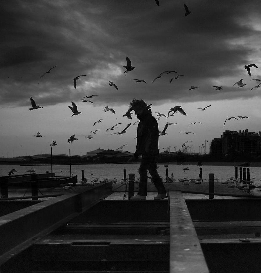birdwatching-1-900x941