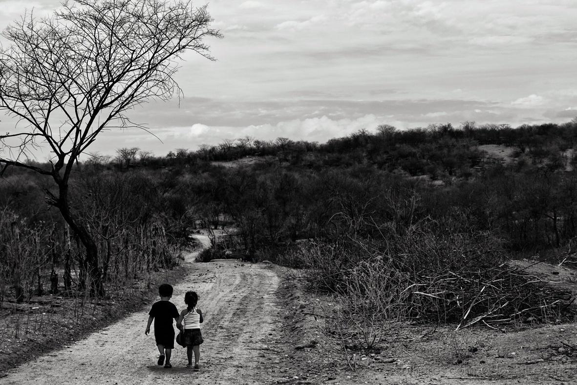 © José Bezerra - Amor infante