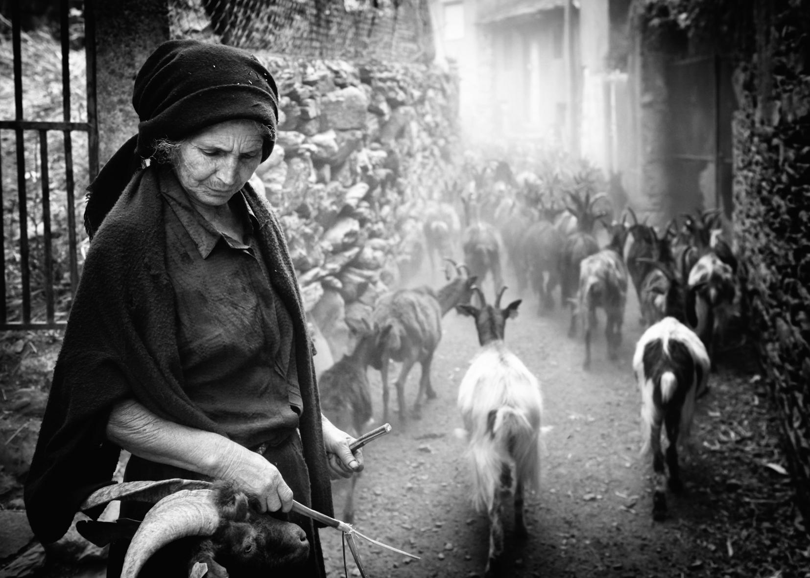 © Rui Pires| Categoria Fotojornalismo