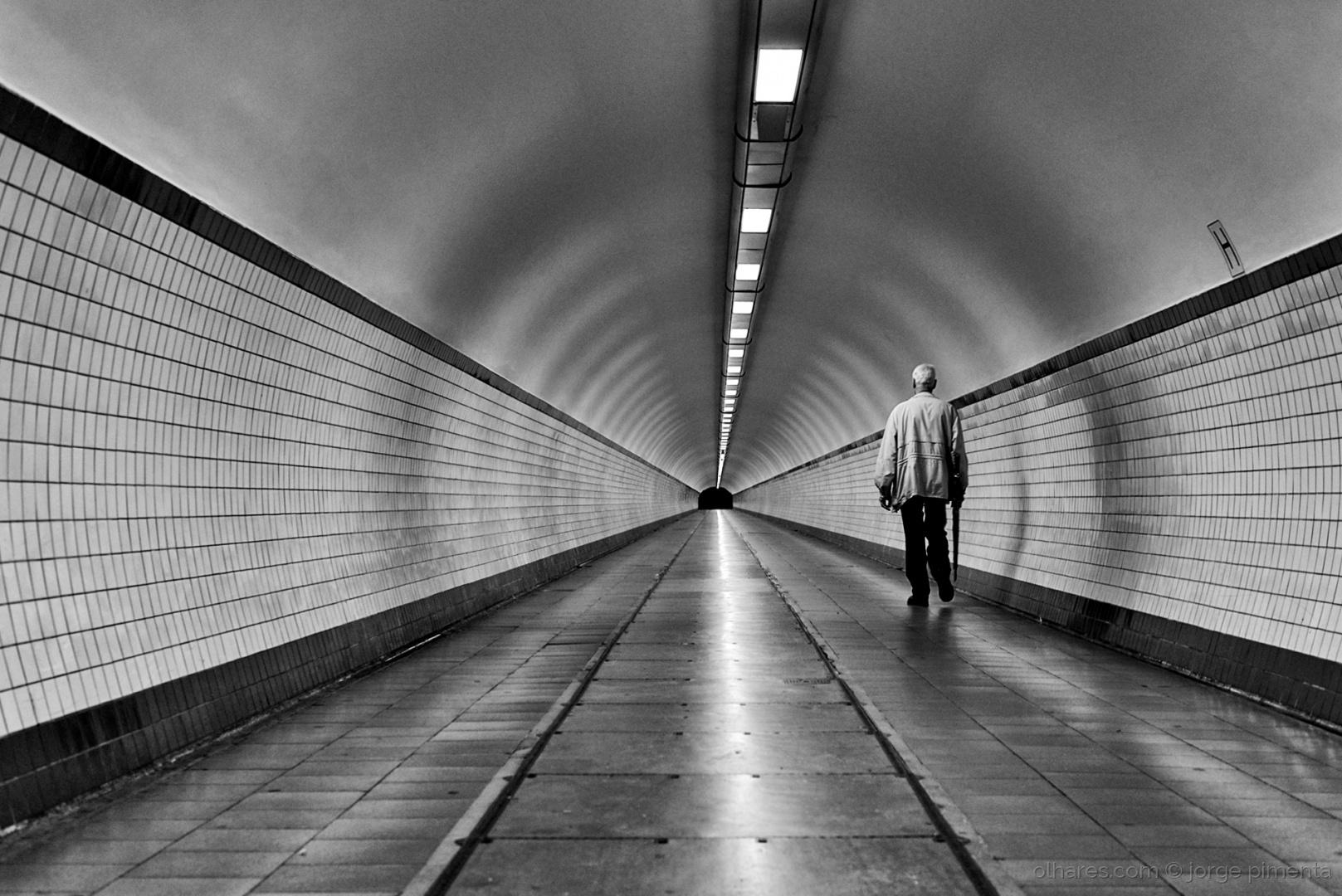© Jorge Pimenta - As linhas da escrita