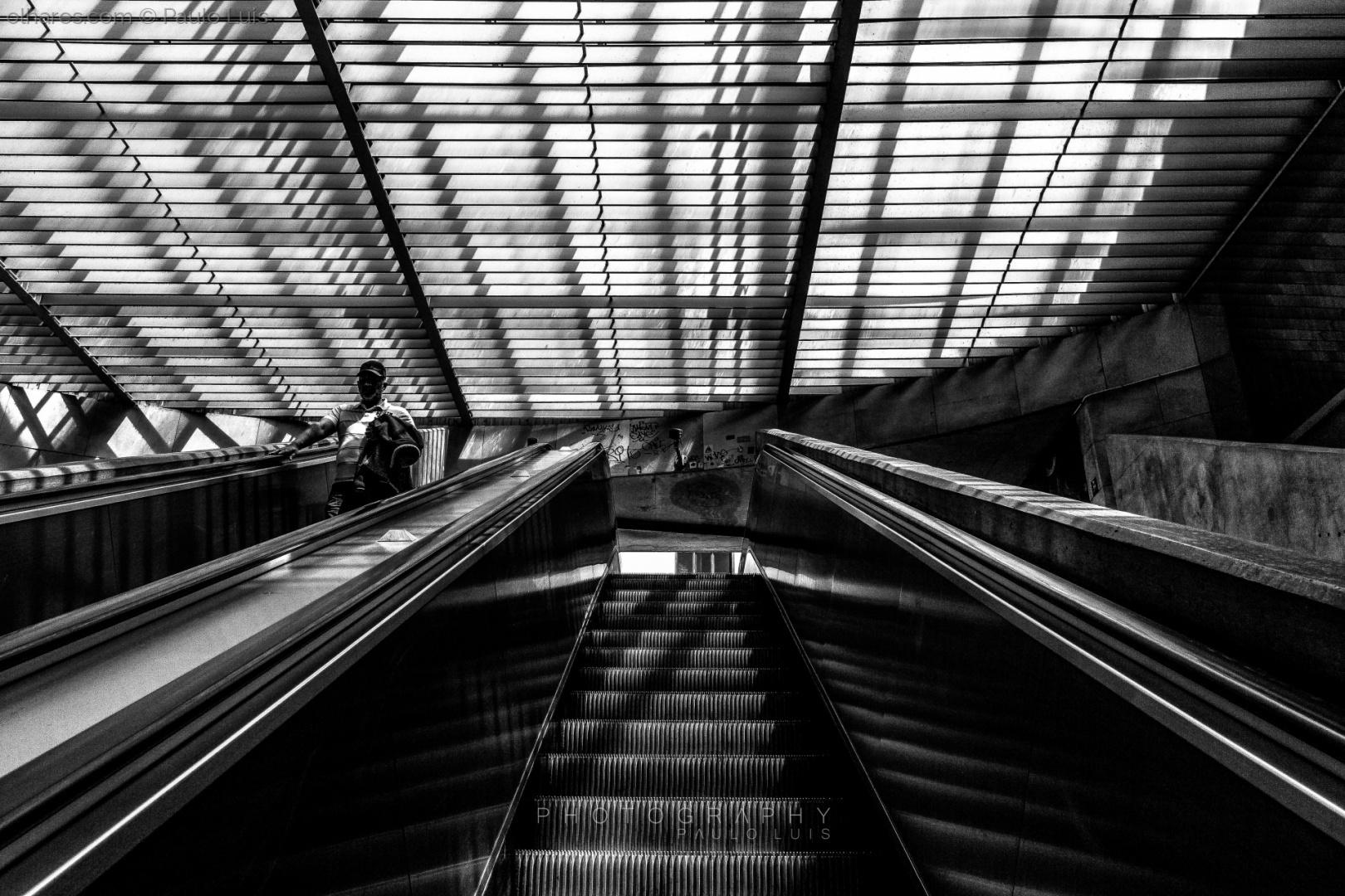 © Paulo Luís - Eu vou para cima ele para baixo...