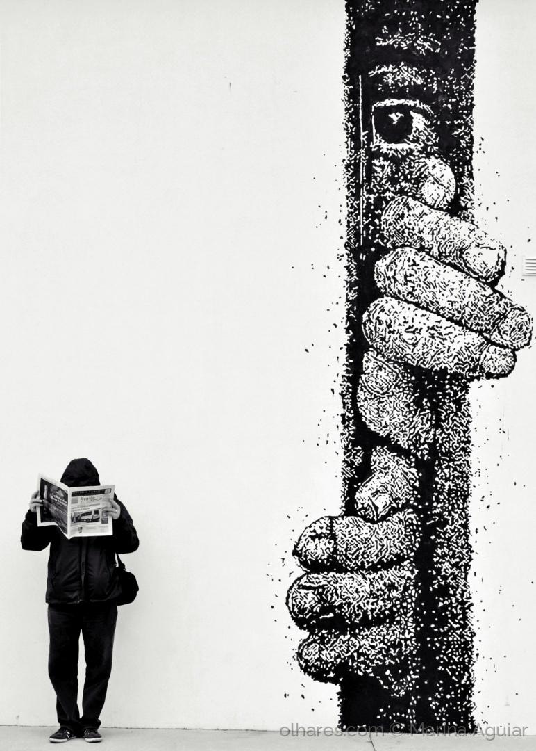 © Marina Aguiar Curiosidade