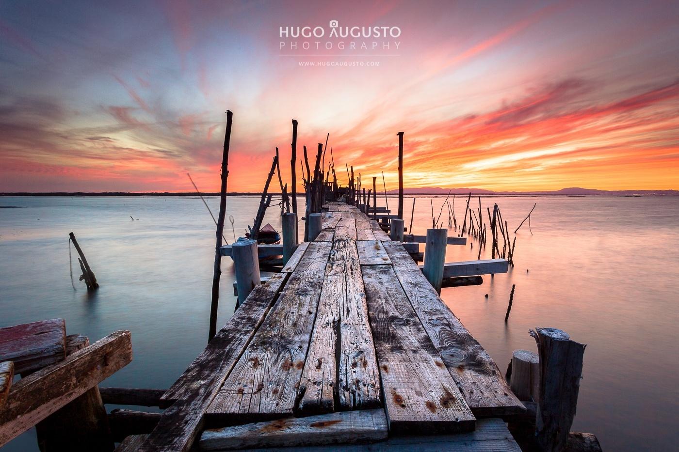 © Hugo Augusto - CARRASQUEIRA, PORTUGAL