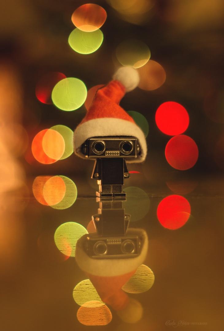© Carla Freire  - Merry Christmas