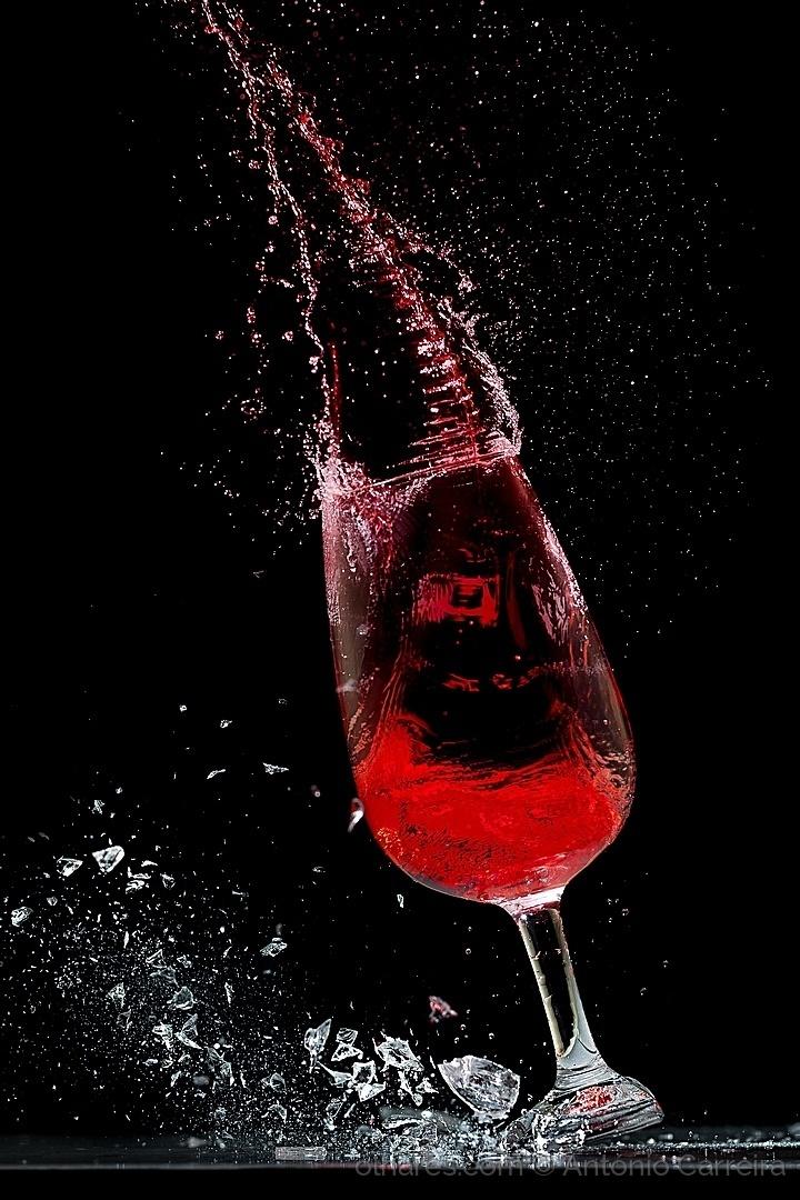 © António Carreira - In vino veritas