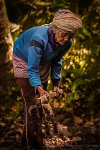 © António Carreira -  Sei de uma camponesa