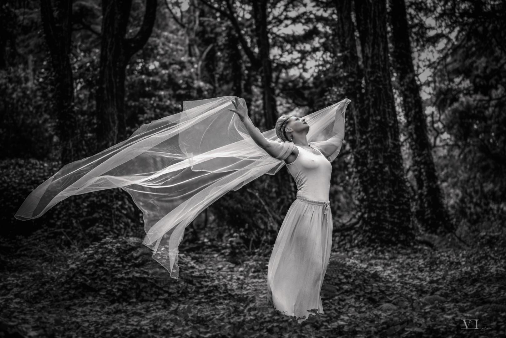 © Vasco Inglez - Sinfonia do vento