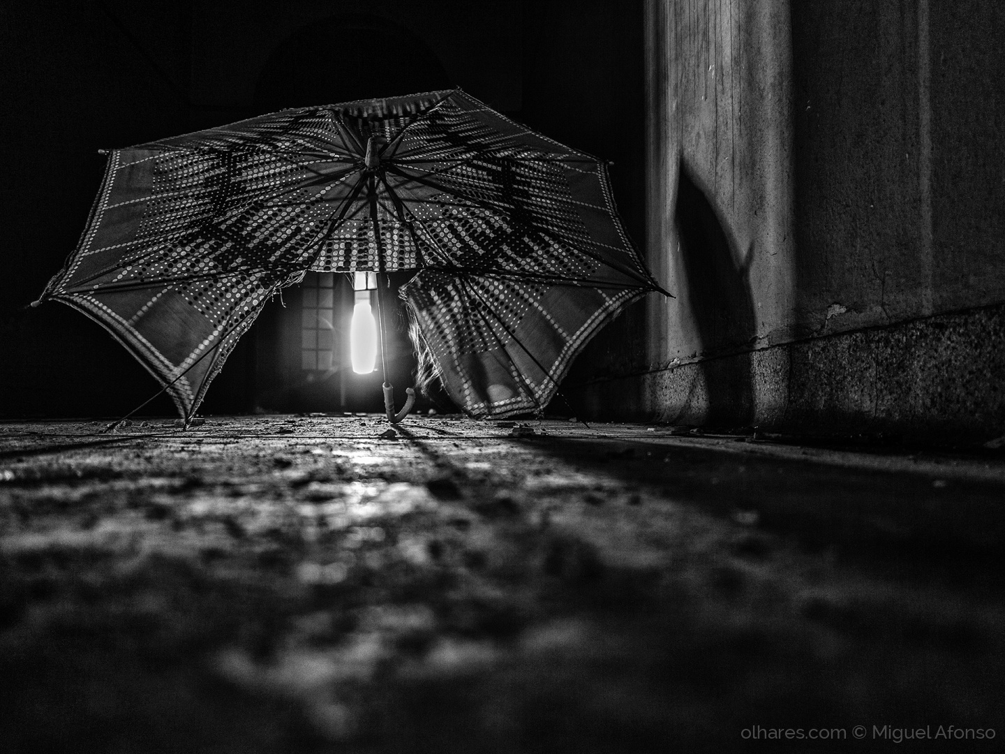 © Miguel Afonso - lost umbrella