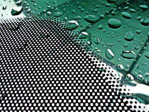 © Fernanda Altenfelder - A chover....