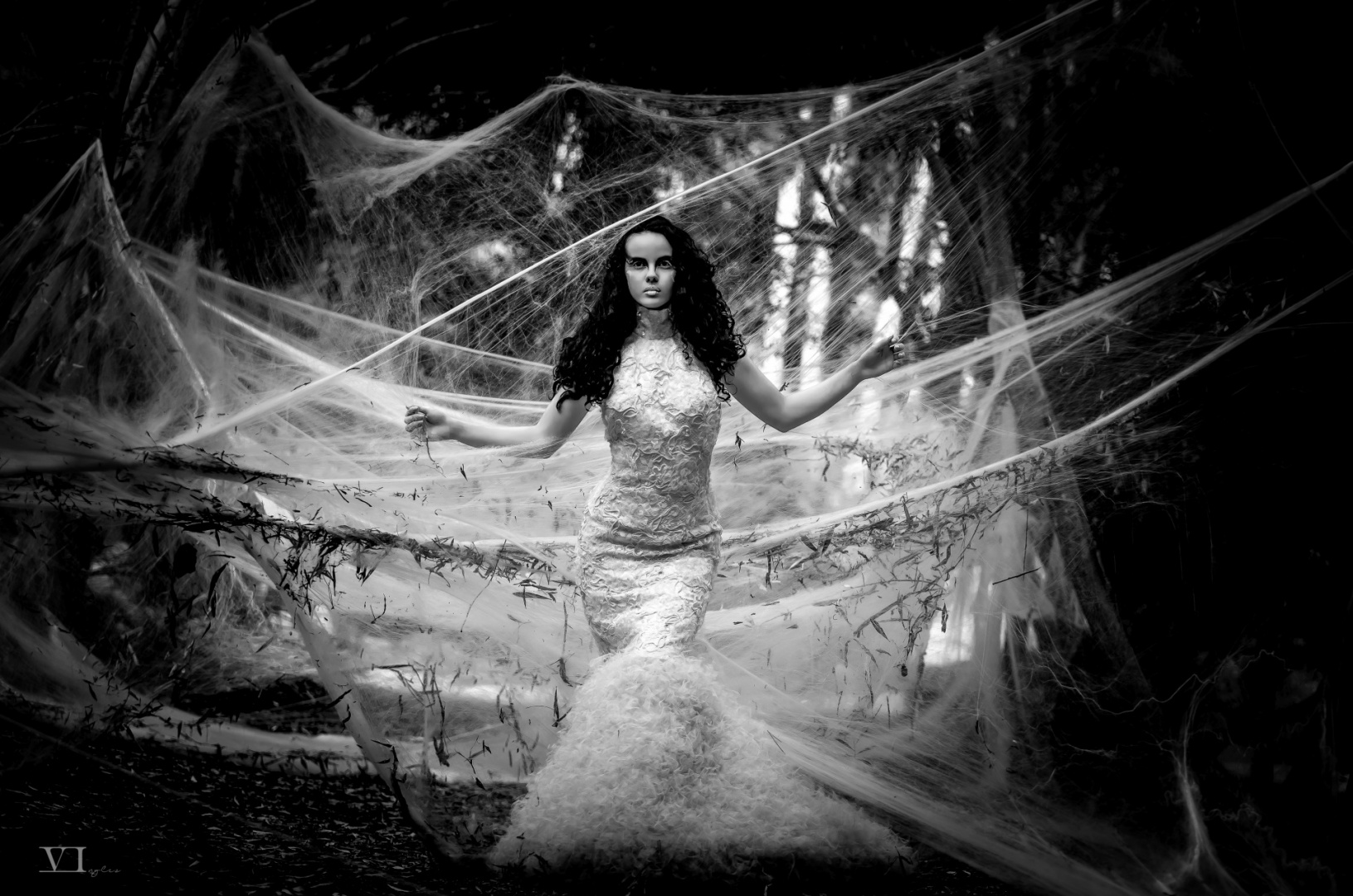 © Vasco Inglez - Queen of spiders