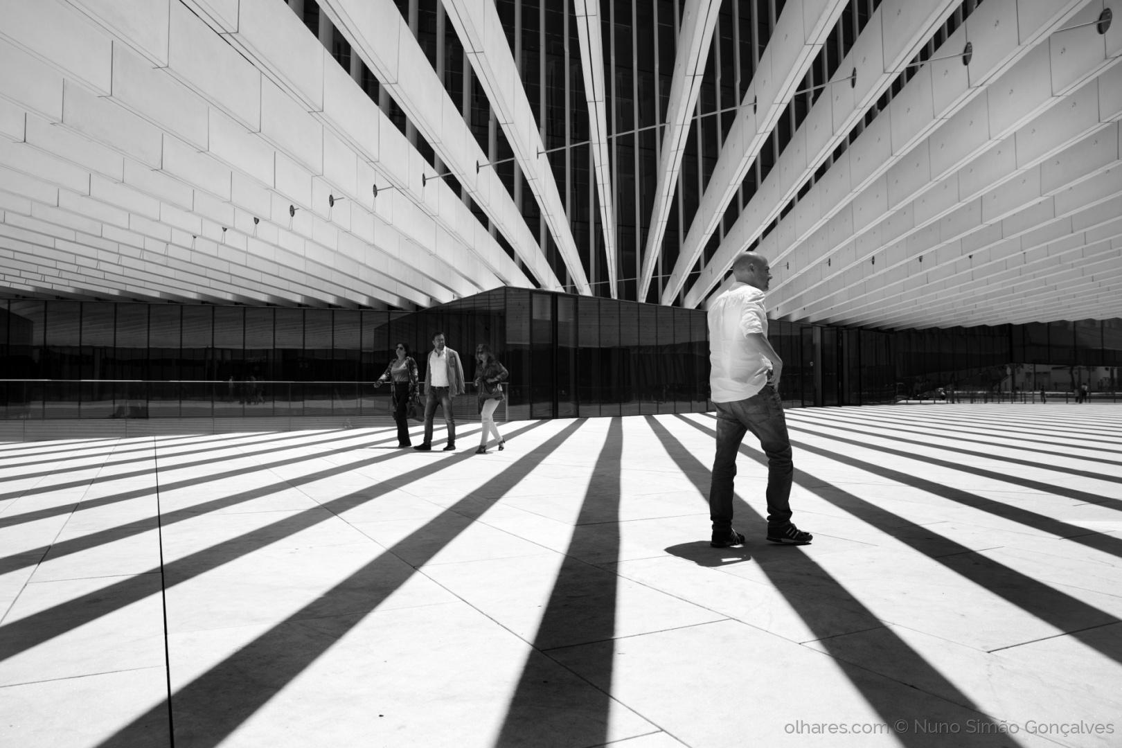 © Nuno Simão Gonçalves - guide lines