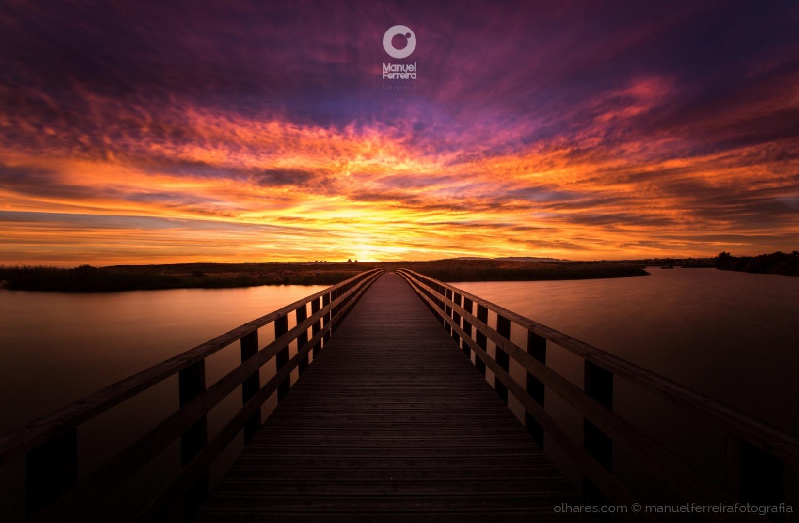 © manuelferreirafotografia - Na ponte para a luz