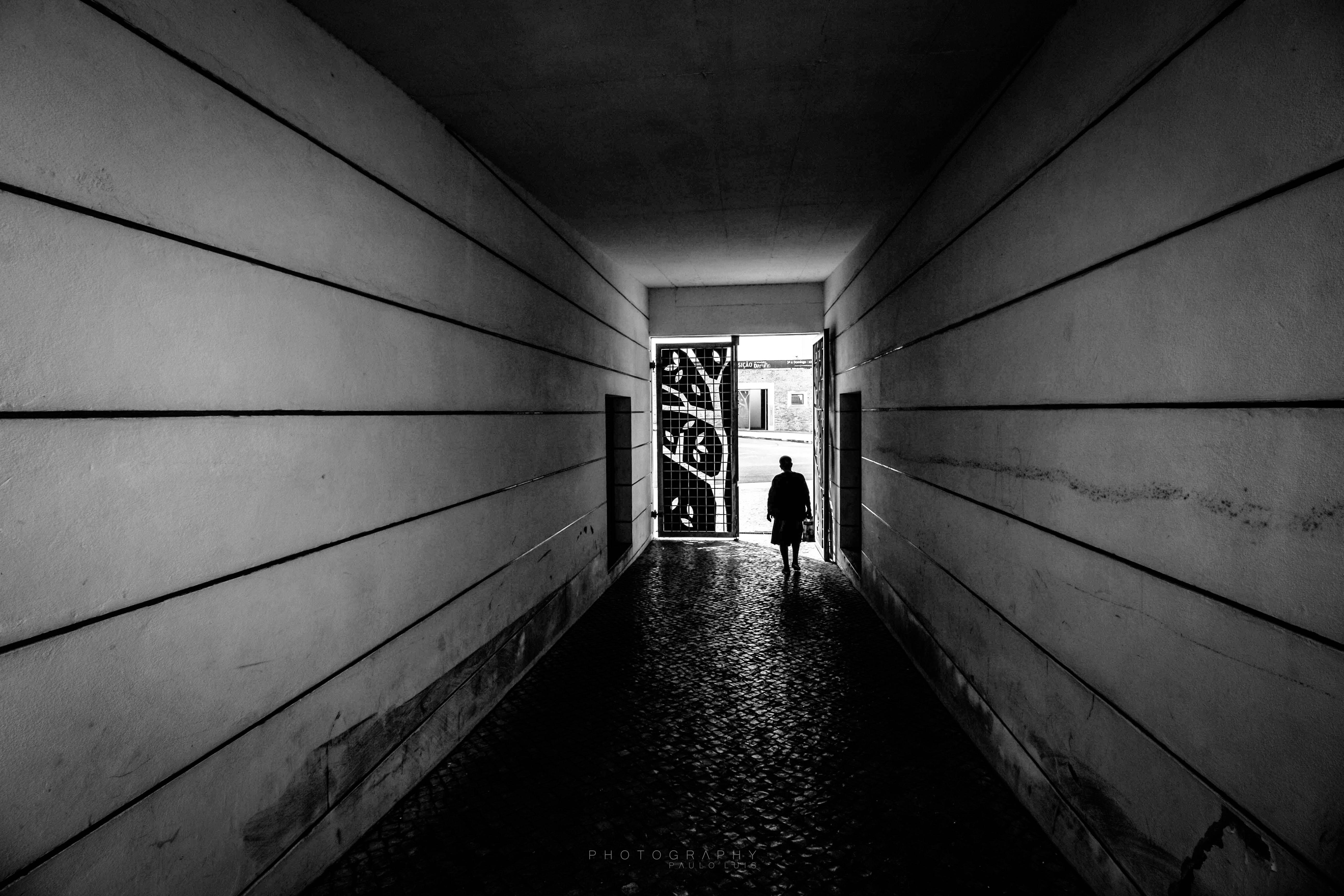 © Paulo Luis - life Is an open Door