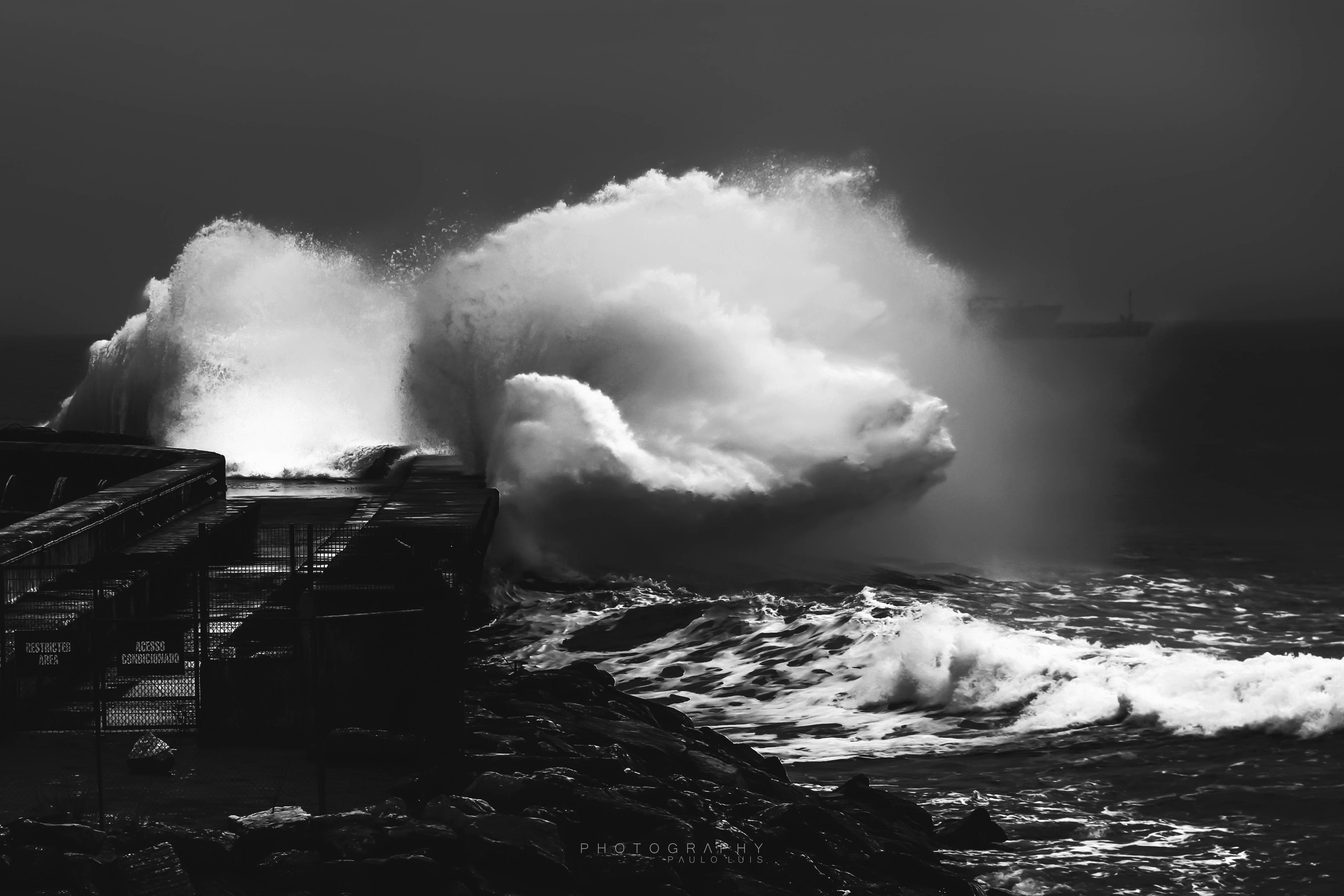 © Paulo Luis - scary wave