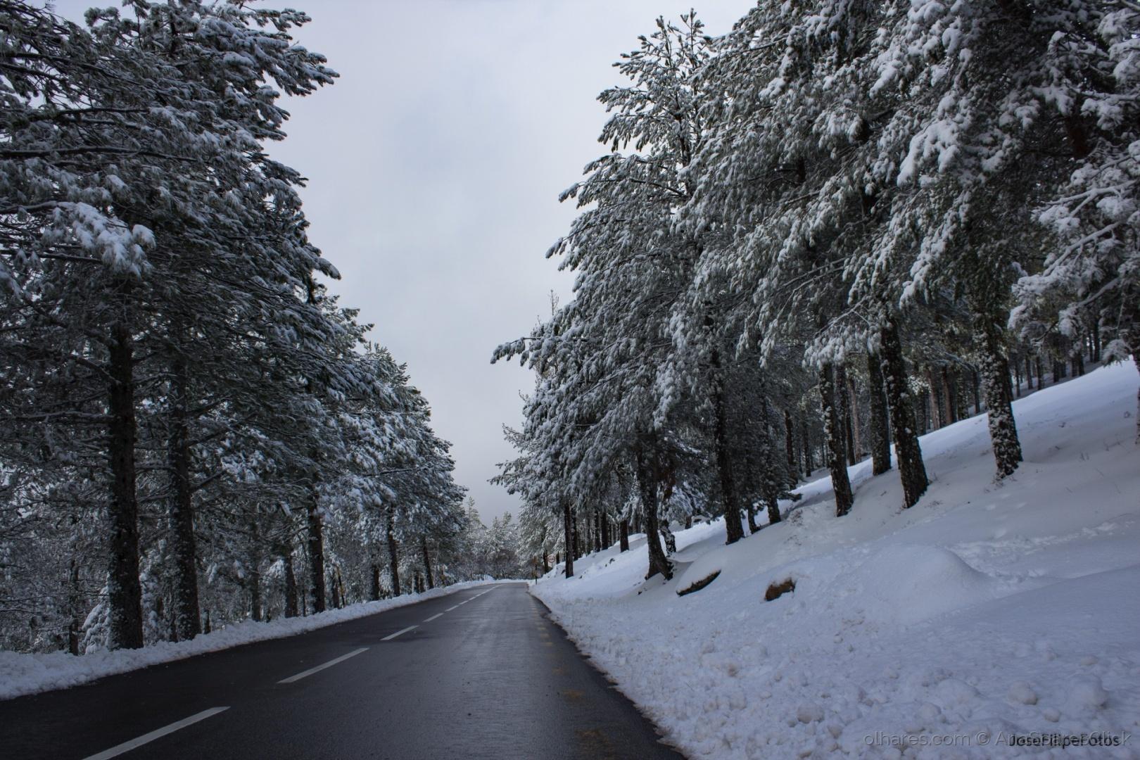 © JoséFilipeFotos - Caminhando pela neve