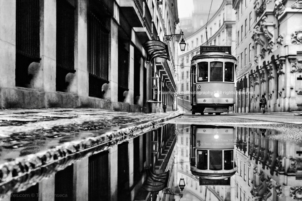 © Tozé Fonseca