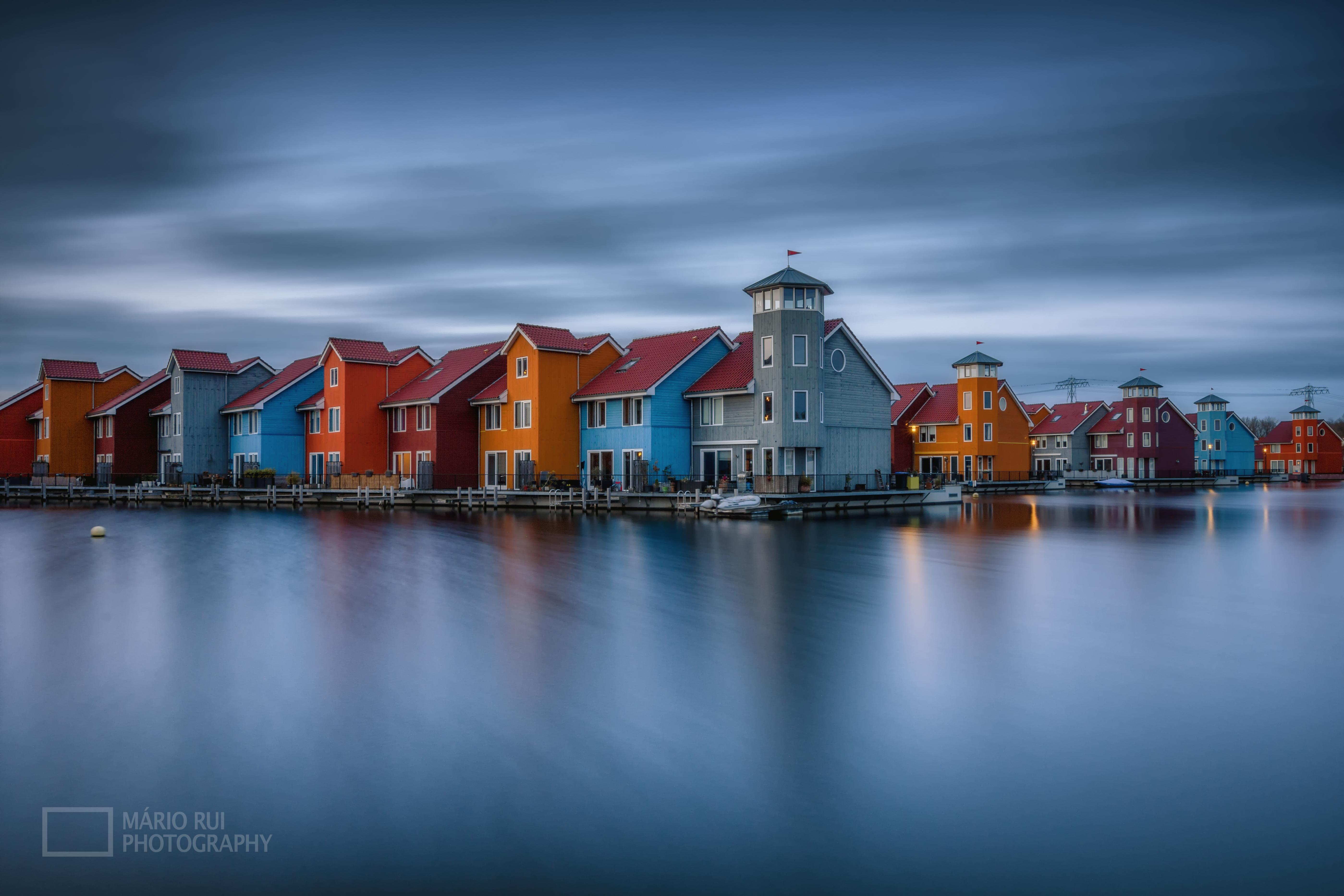 © Mário Rui - Blue Dutch
