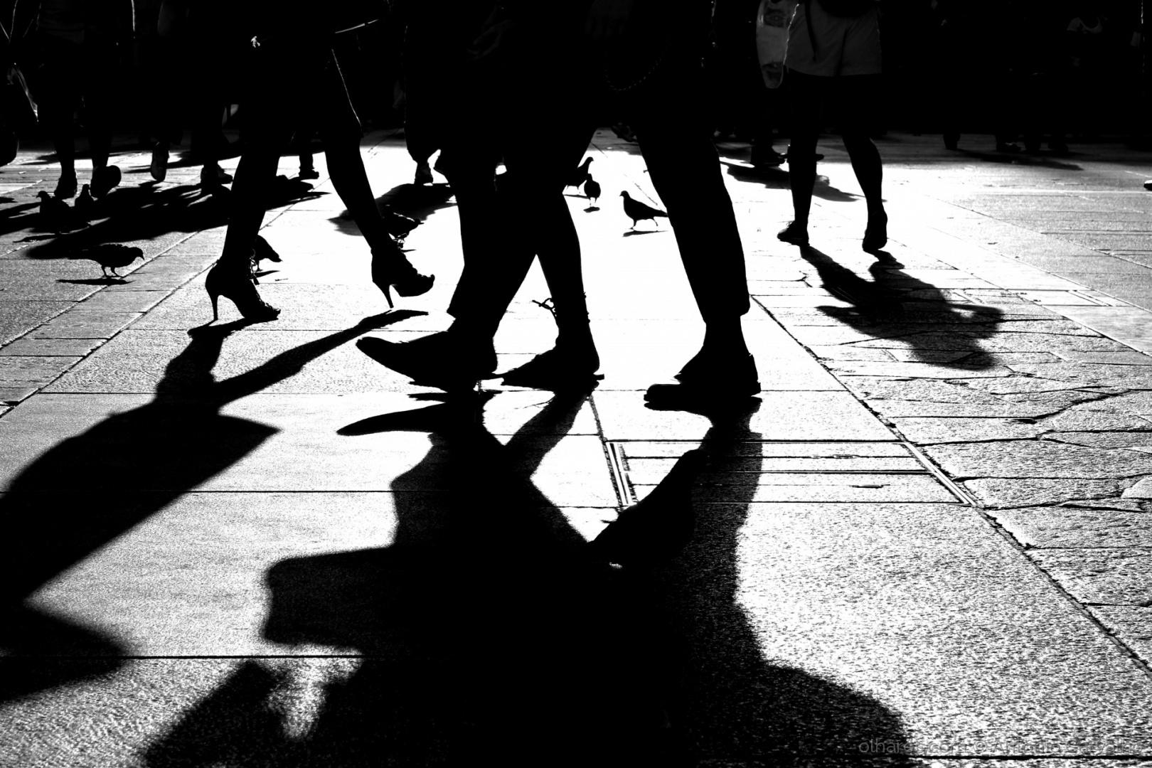 © António Carvalho - Transitoriedade