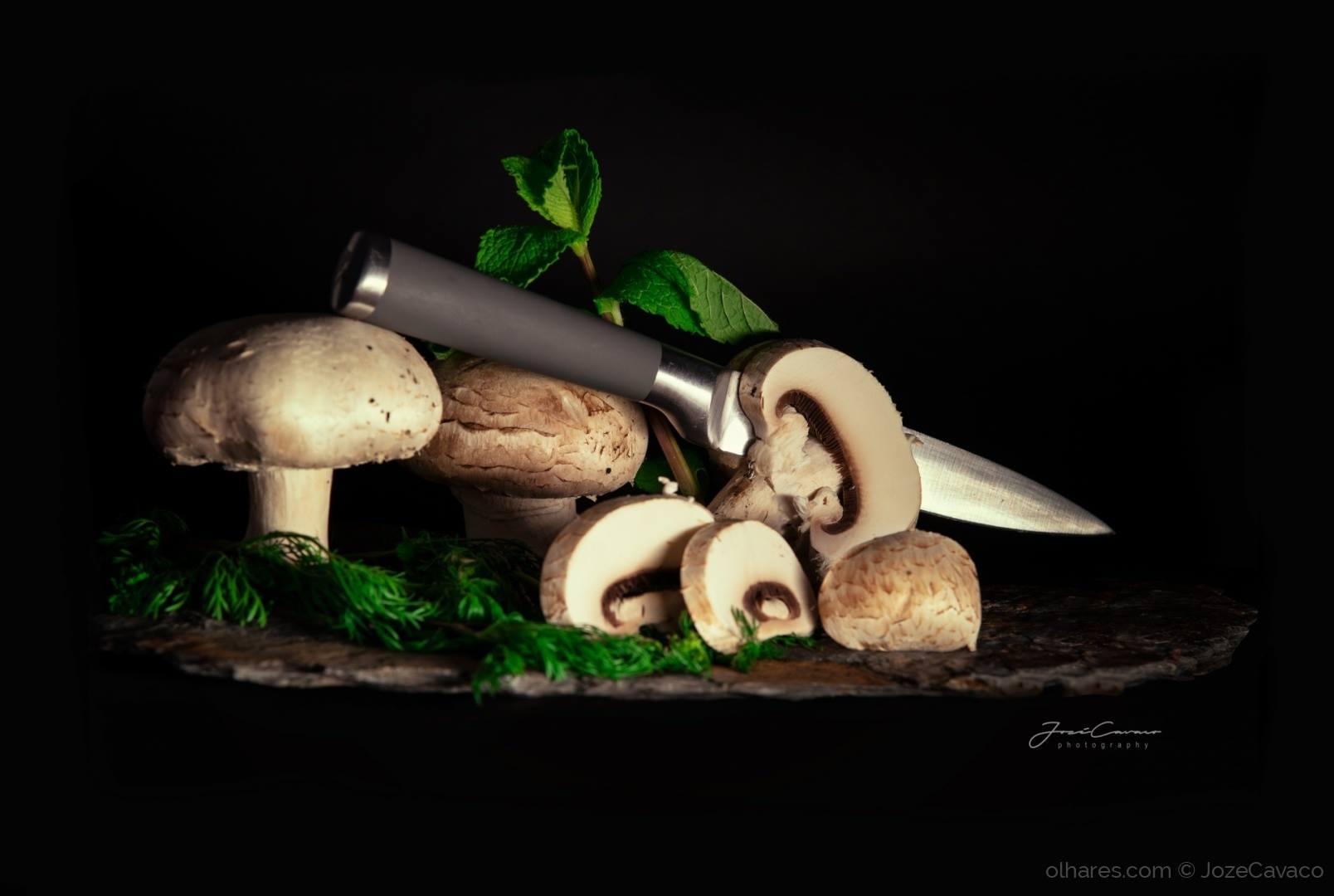 © JozeCavaco - Cogumelos