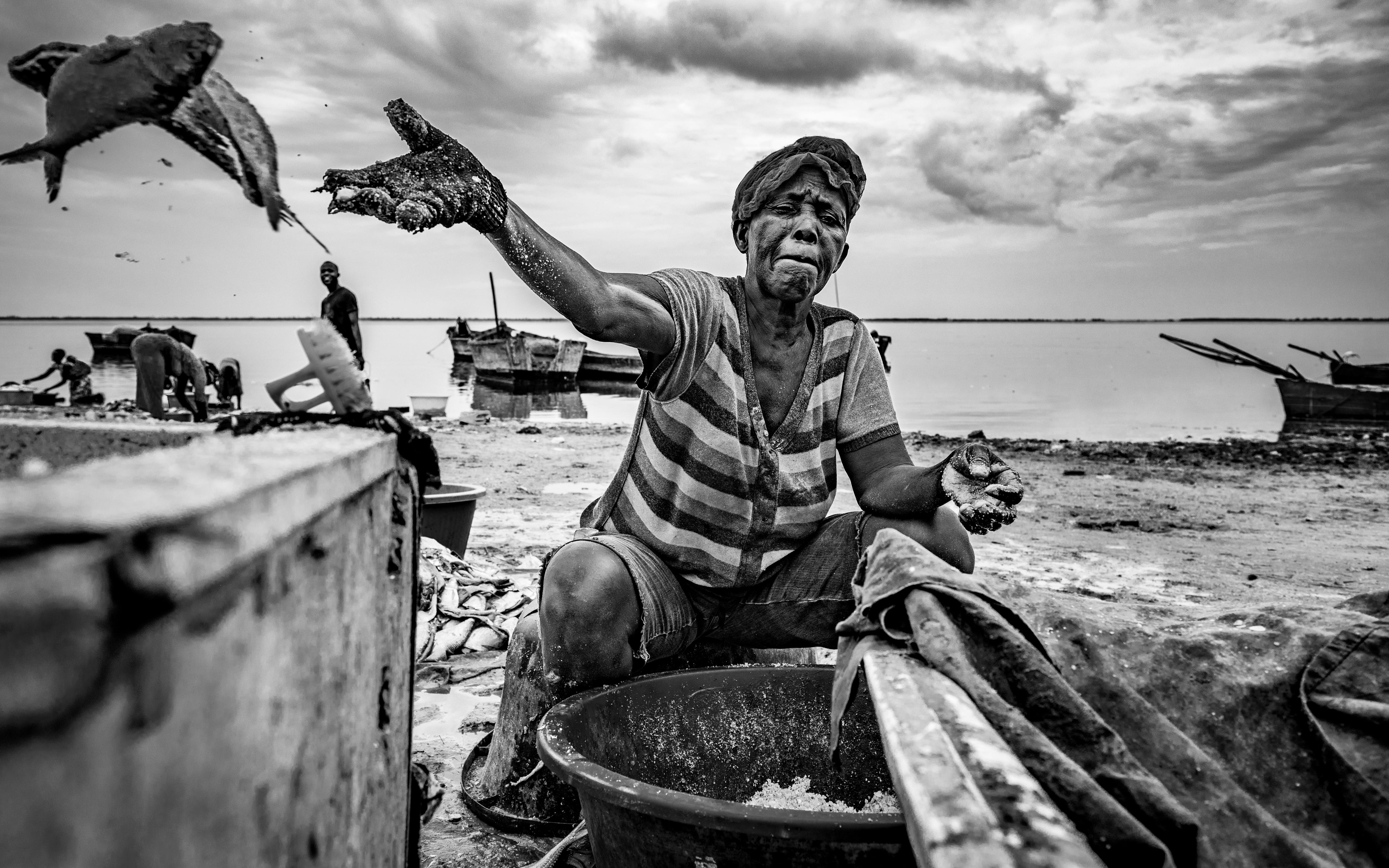 © João Coelho - A salga do peixe I