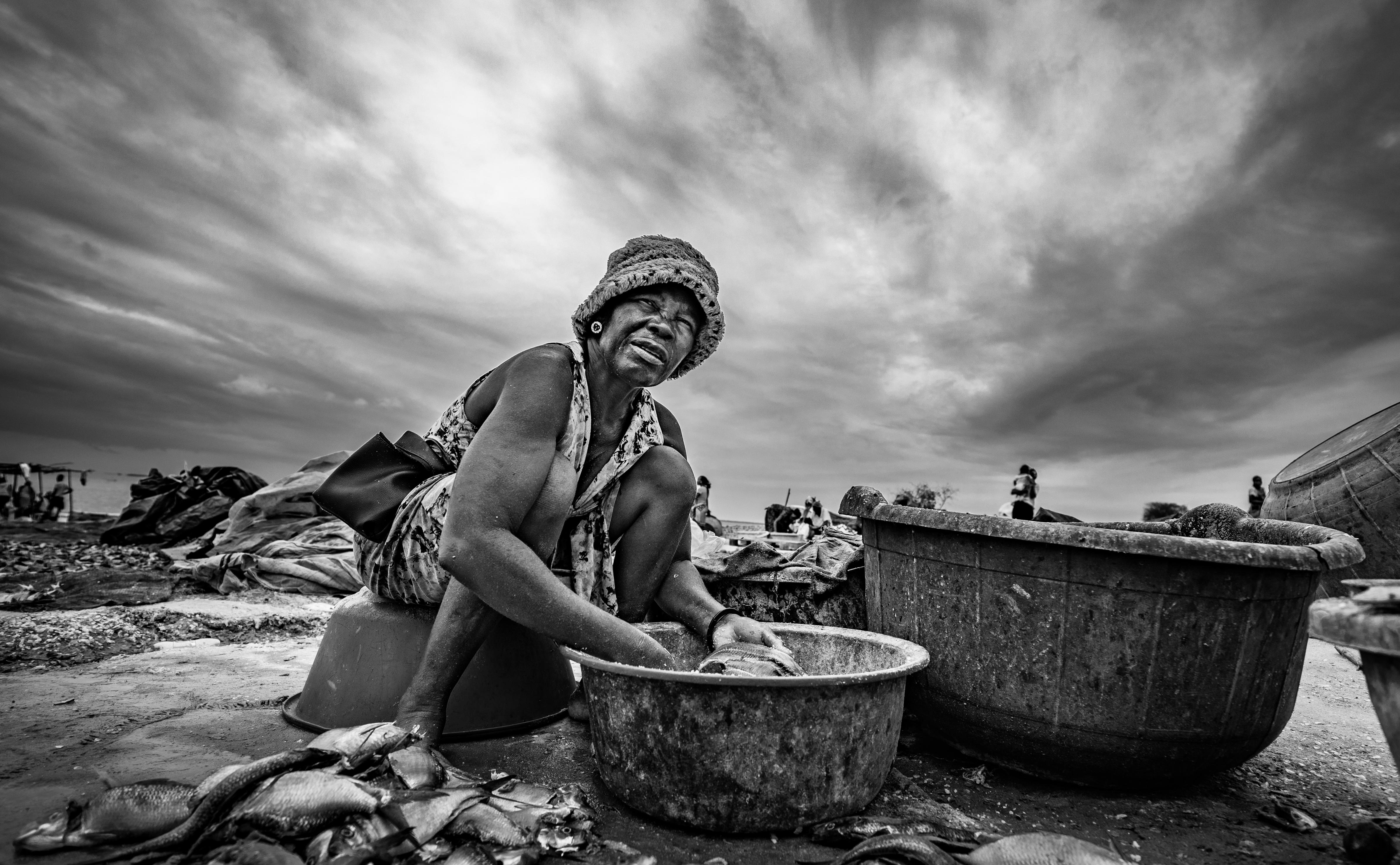 © João Coelho - A salga do peixe II