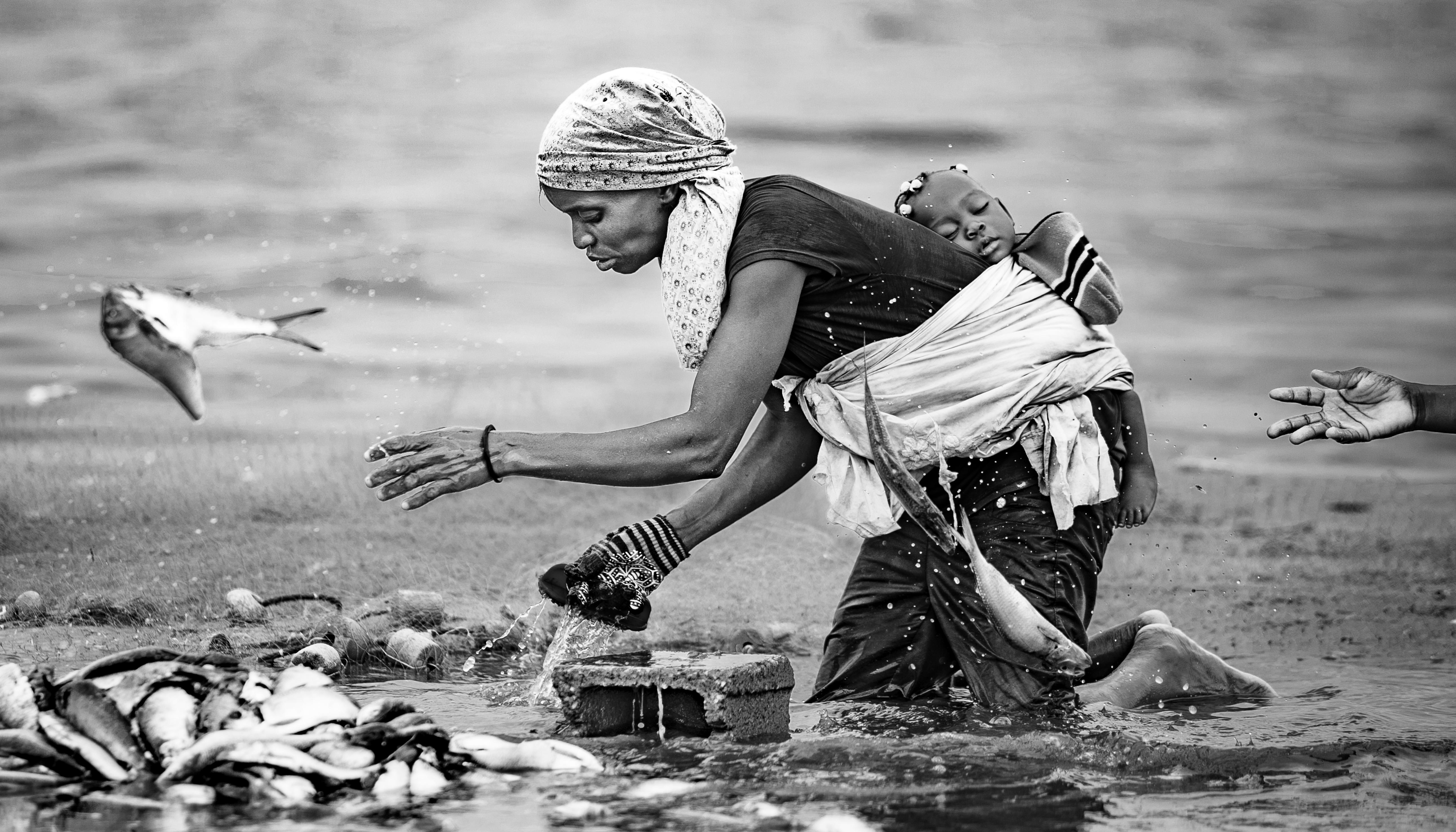 © João Coelho - A lava do peixe I
