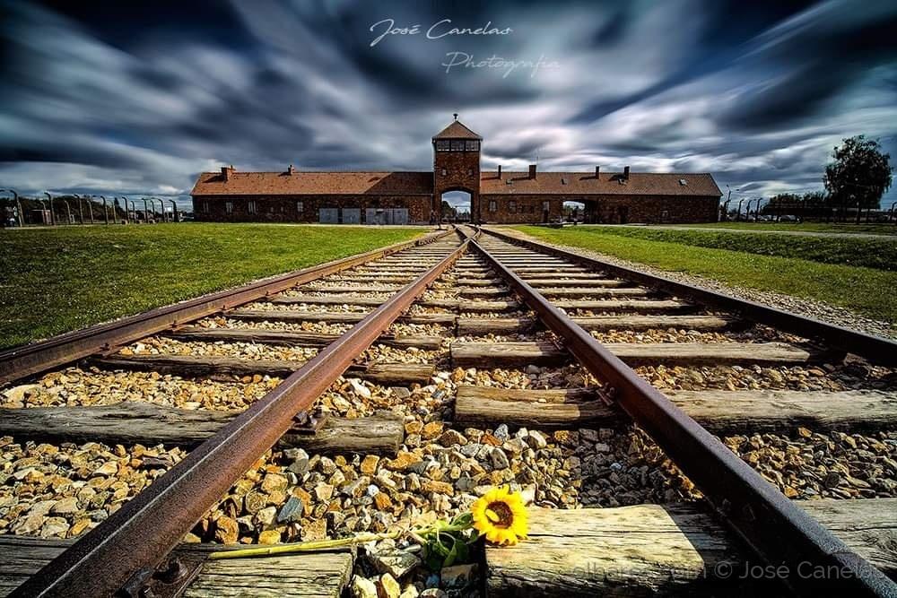 Auschwitz © José Canelas