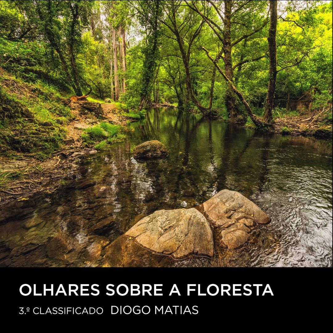 Diogo-Matias-MyPlanet-olhares